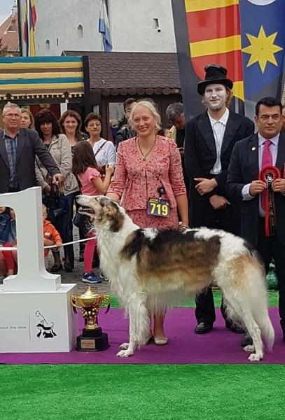 siil-dracula-winner